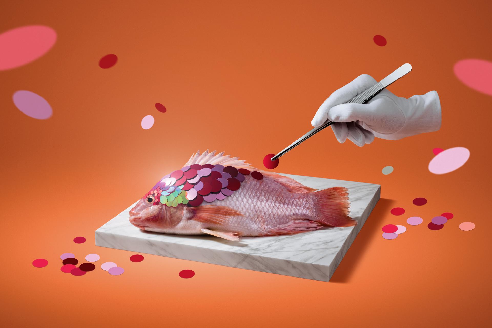 fish_preza_site